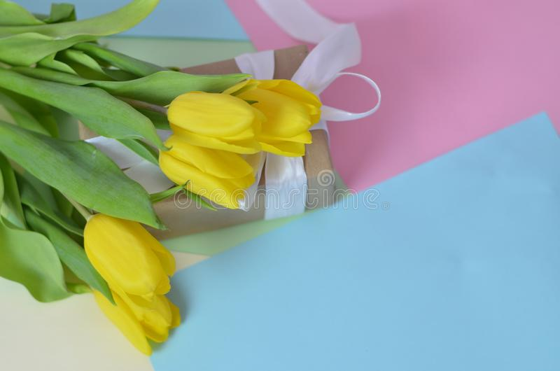 Fresh beautiful yellow tulips gift box on colorful background. Spring concept. top view with copy space. Happy mother day, hello stock photos