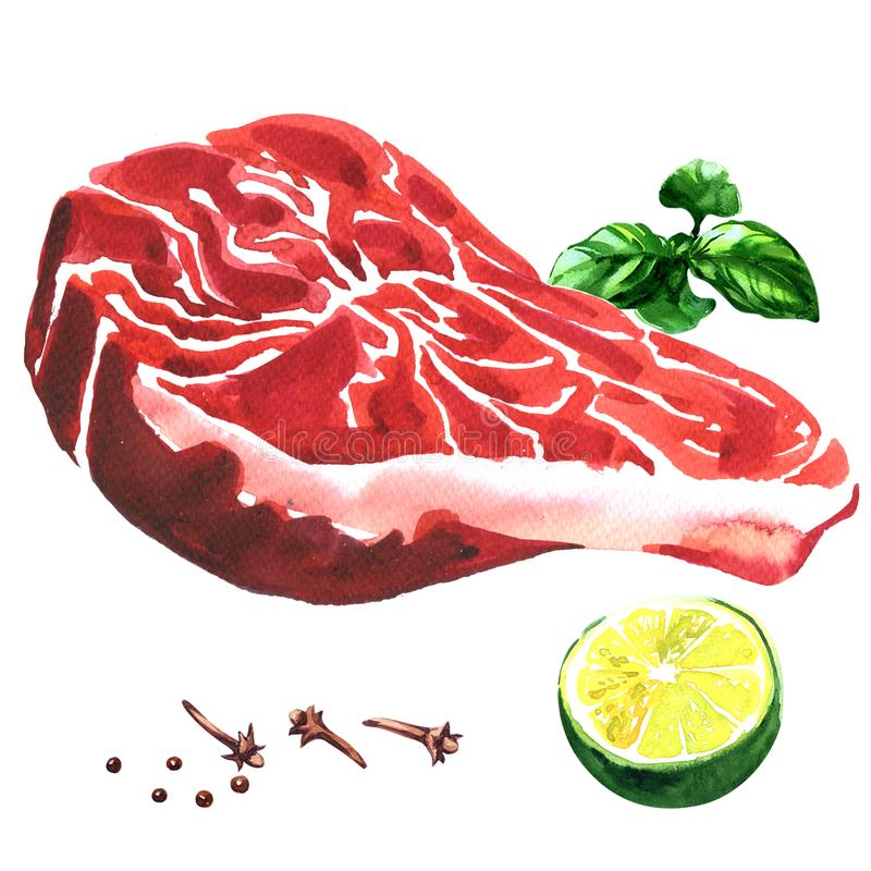 Fresh beef steak, raw marbled beef with lime, basil, spices, food concept, isolated, hand drawn watercolor illustration. On white background vector illustration