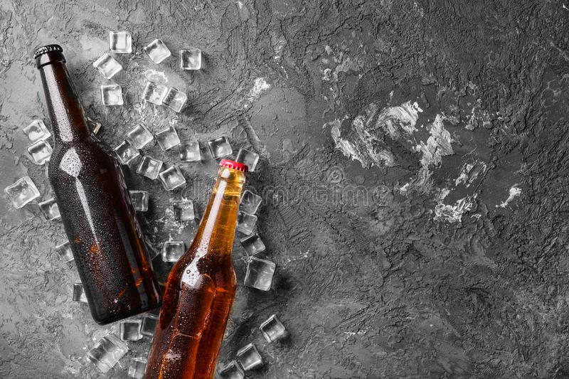 Fresh beer in glass bottles and ice cubes on gray background royalty free stock photos