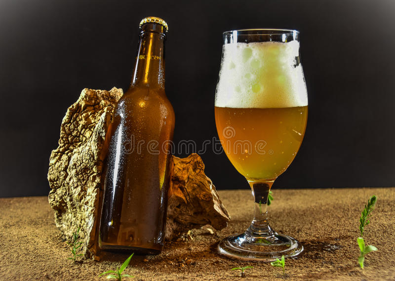 Fresh beer. Ready to consume royalty free stock photos