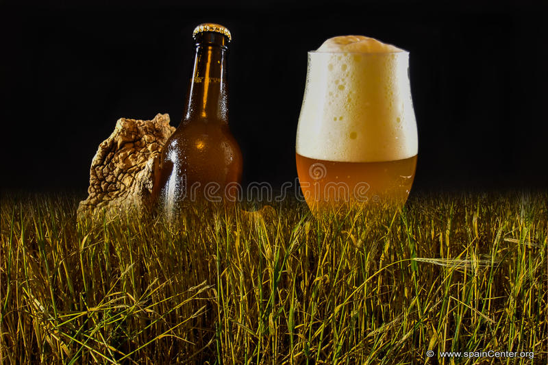 Fresh beer. Ready to consume royalty free stock photography