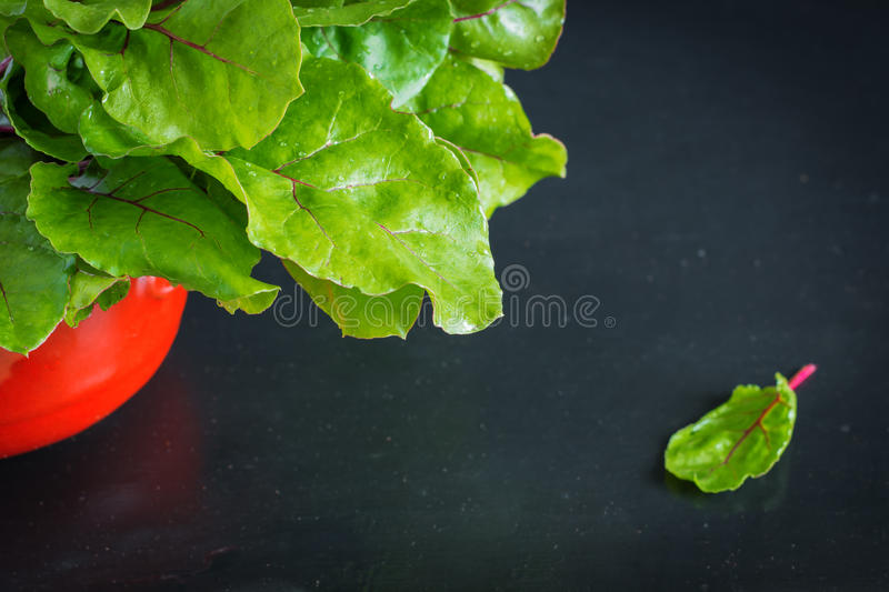 Fresh beet roots with leaves stock image