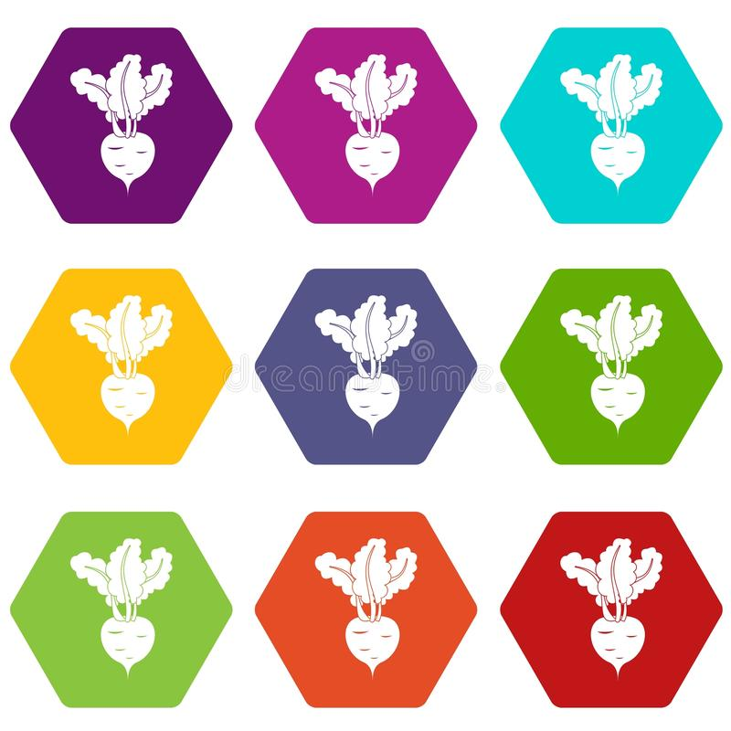 Fresh beetroot icon set color hexahedron stock illustration