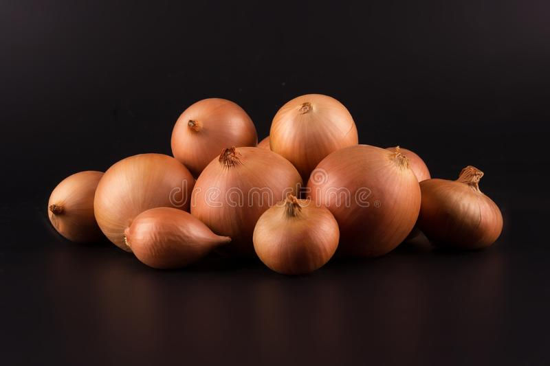 Fresh beige onions on a black background, beautifully photographed, photo for poster, banner. Fresh beige onions on a black background, beautifully photographed royalty free stock image