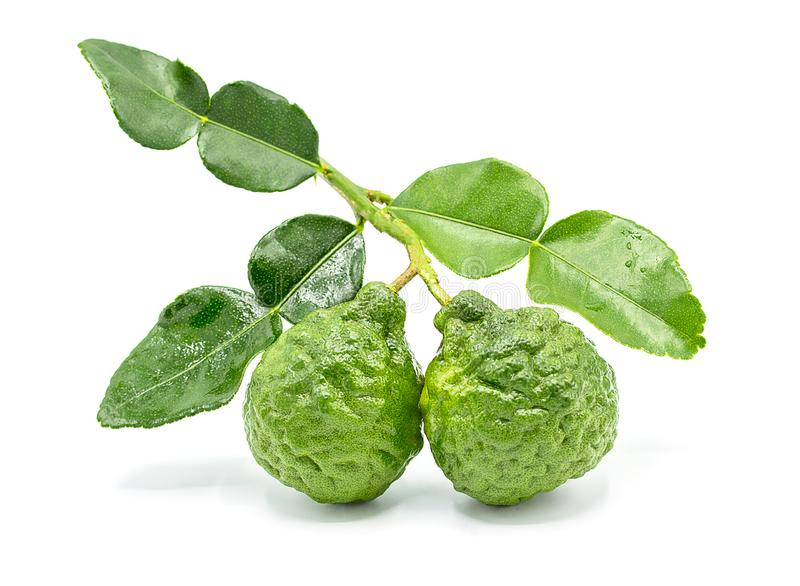 Fresh Bergamot fruit with leaf isolated on white background stock photos