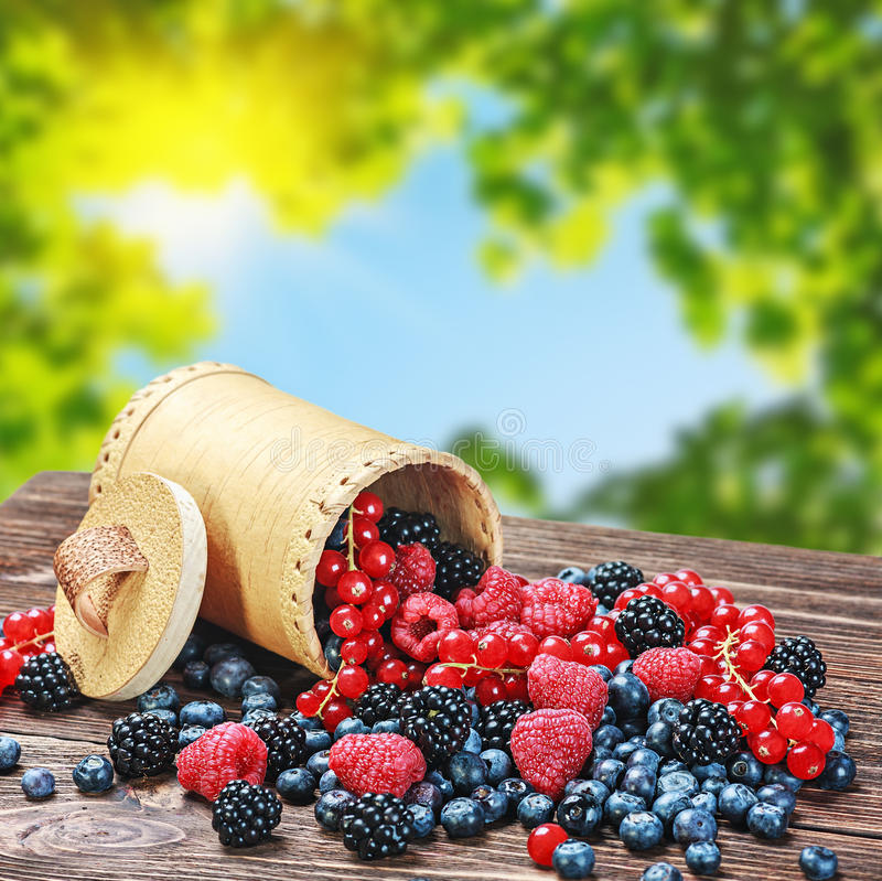 Fresh berries in a basket stock image
