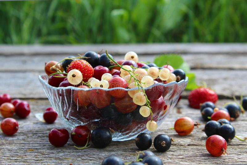 Fresh berries of cherry, gooseberry, currant lie on a glass plate and scattered around it royalty free stock images