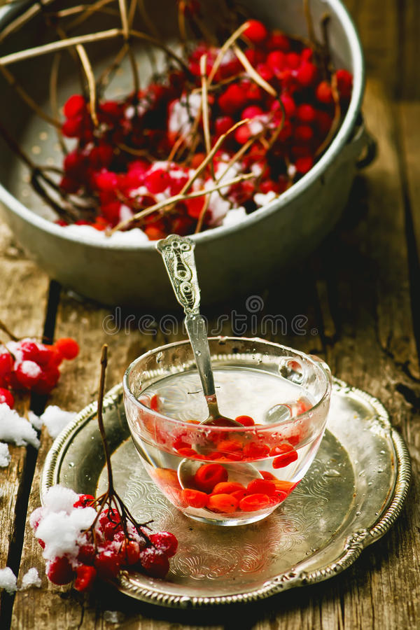 Fresh berries of a guelder-rose in a glass cup on a wooden table. Style rustic. the image is tinted stock photography