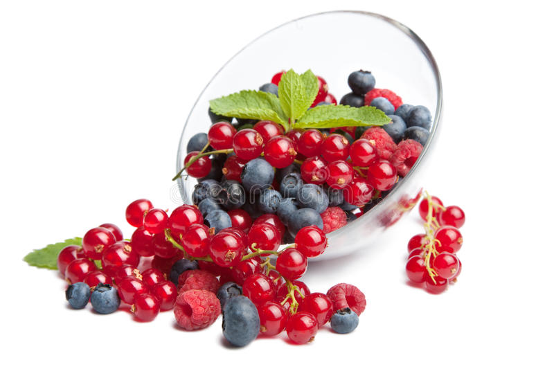 Fresh berries isolated. Over white royalty free stock photo