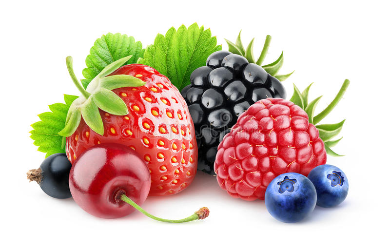 Fresh berries stock photography