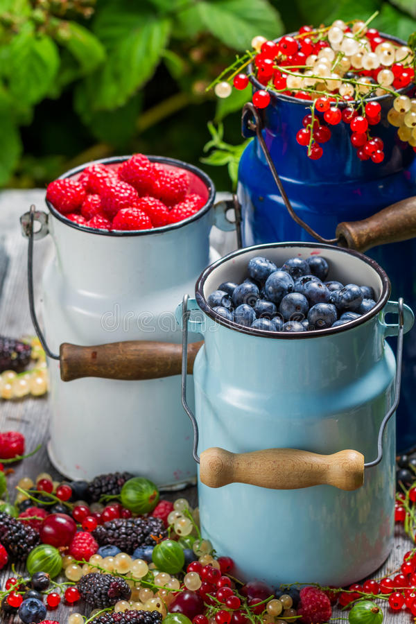Fresh berry fruits in churn royalty free stock photos