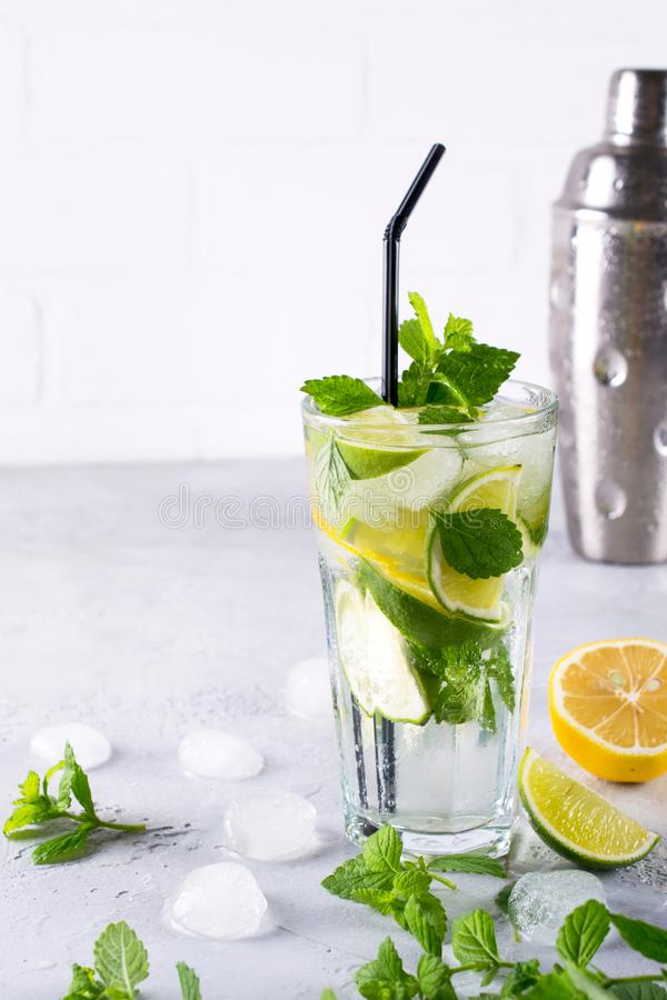 Fresh berry lemonade Home made mojito cocktail with lemon, lime, mint leaves, with ice and shaker. royalty free stock images