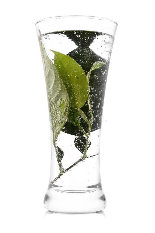 Download Fresh beverage stock image. Image of mineral, garnish - 10640787