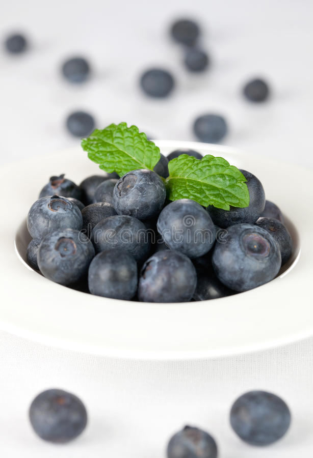Fresh bilberries in a bowl. Fresh bilberries with mint in a bowl selective focus royalty free stock images