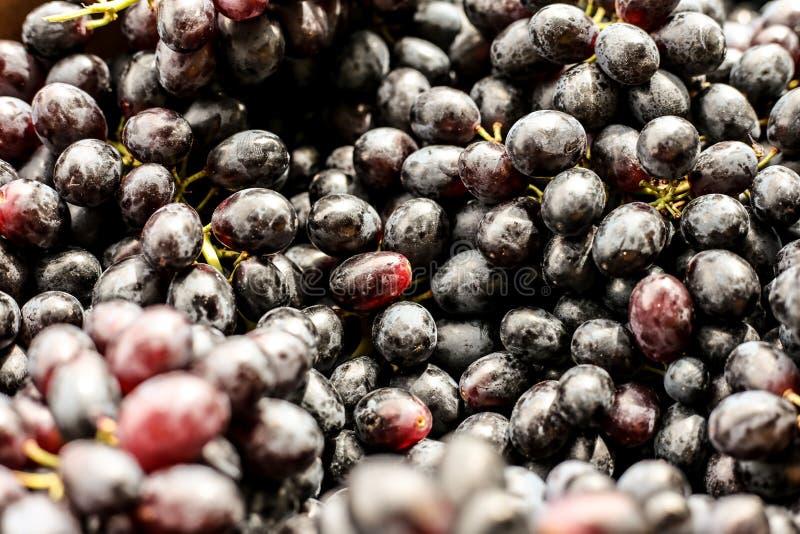 Black Brazilian grape stock photos