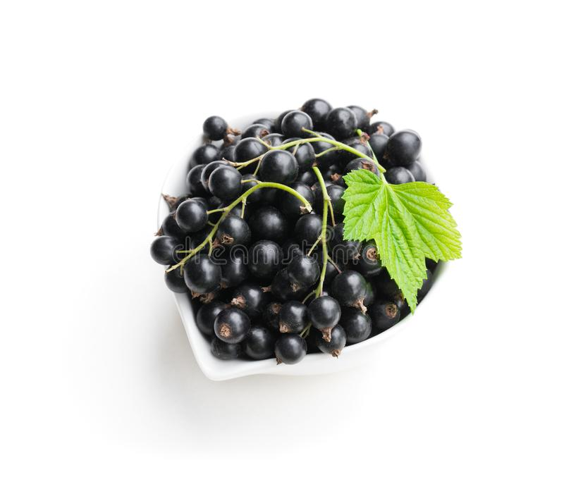 Fresh black currant in ceramic bowl isolated on white royalty free stock photo