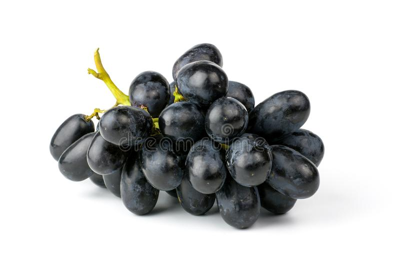 Fresh black grapes isolated on white background. stock photos