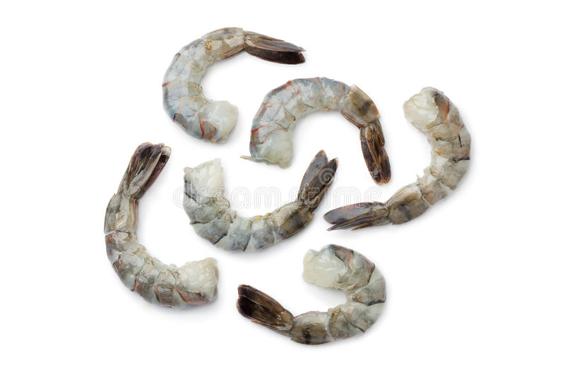 Fresh black tiger shrimp tails stock images