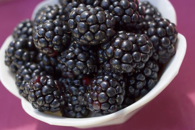 Fresh blackberries. Closeup image of bowl of fresh blackberries stock photo
