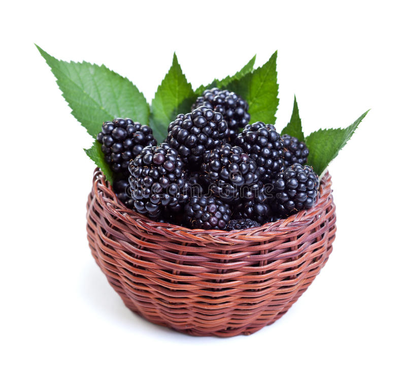 Fresh Blackberry In Small Fruit Basket Stock Photo
