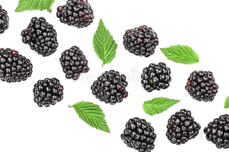 Fresh blackberry with leaves isolated on white background with copy space for your text. Top view. Flat lay pattern.  vector illustration