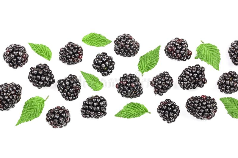 Fresh blackberry with leaves isolated on white background with copy space for your text. Top view. Flat lay pattern.  royalty free illustration