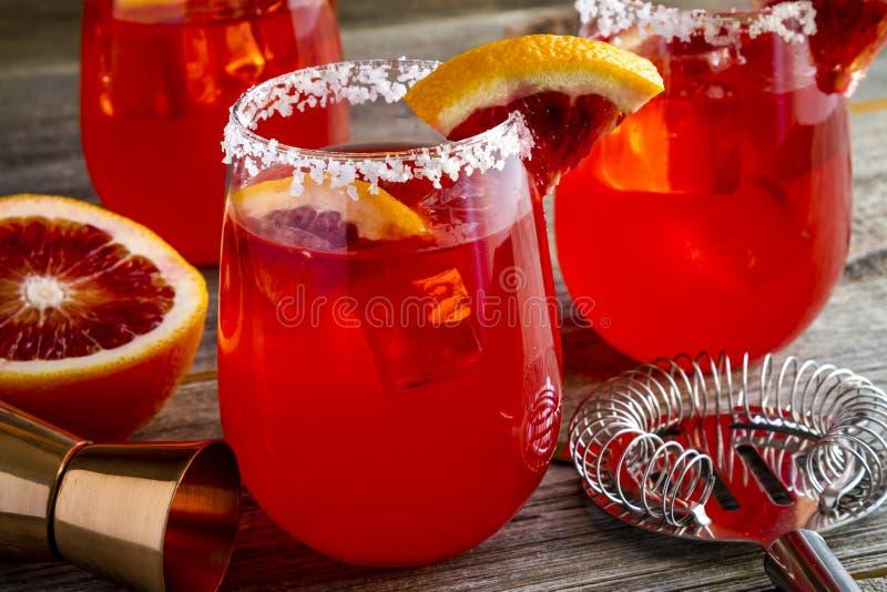 Fresh Blood Orange Margaritas royalty free stock image