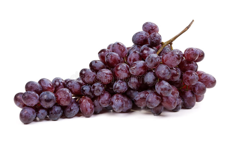 Fresh blue grape fruit stock photo