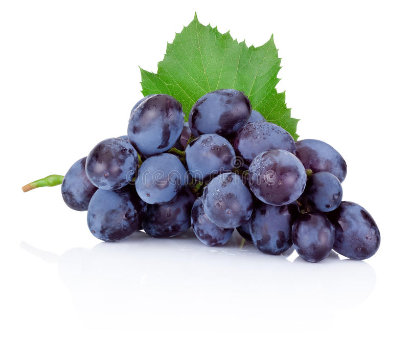 Fresh blue grapes with green leaf on white background stock photo