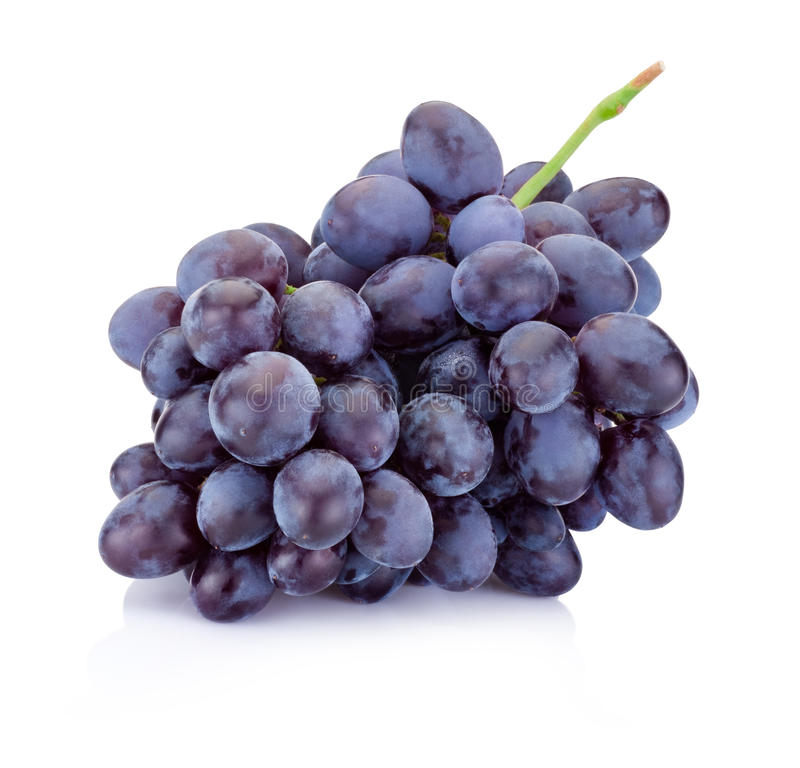 Fresh blue grapes isolated on white background royalty free stock image