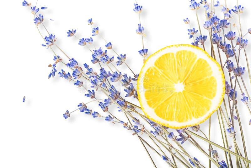 Fresh blue lavender with big lemon slice on white stock photography