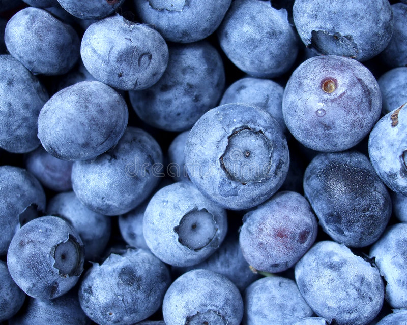 Fresh Blueberries. Macro photo of fresh blueberries
