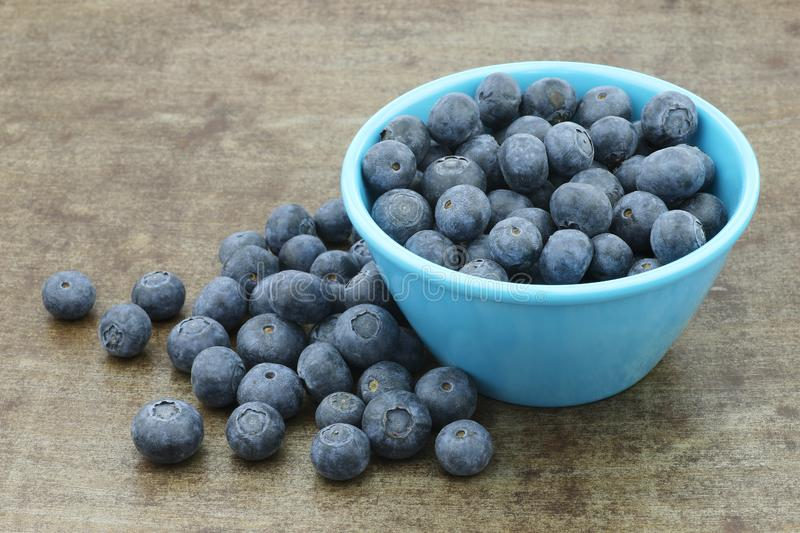 Fresh blueberries in a blue bowl. On a grungy metal tray background royalty free stock images