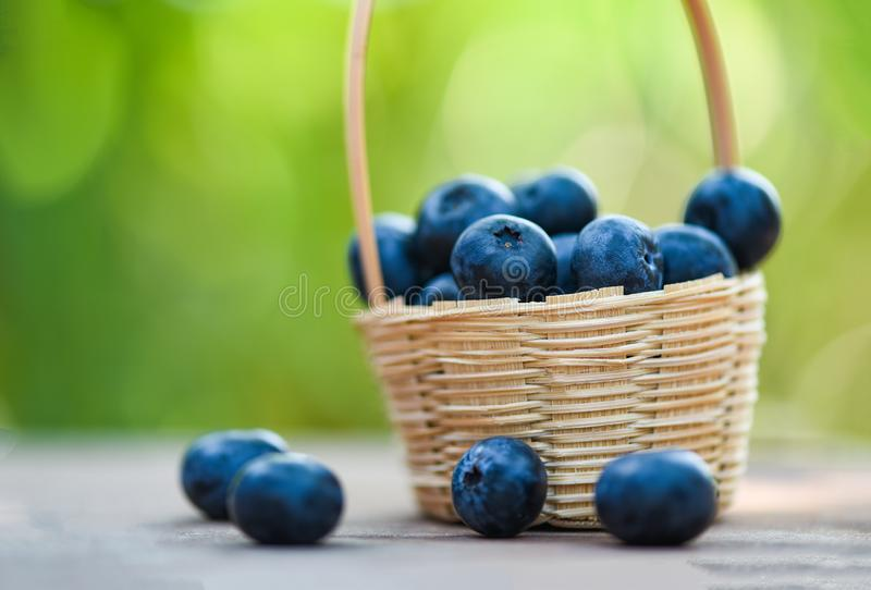Fresh blueberries fruit in basket on wooden with nature green blur background royalty free stock image