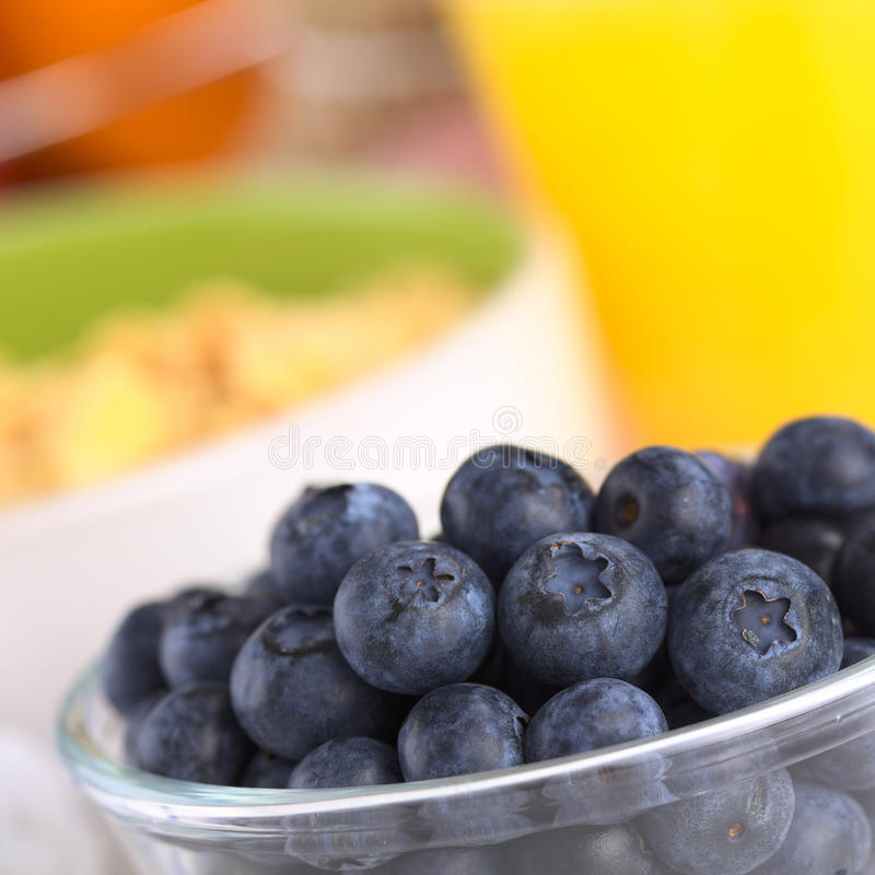 Fresh Blueberries. In glass bowl with a bowl of cereal and orange juice in the back (Selective Focus, Focus on the middle row of blueberries stock image