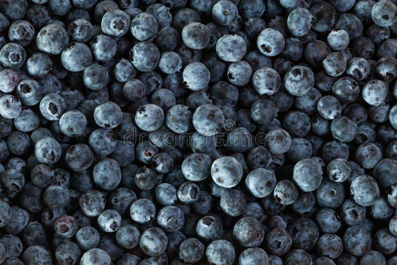 Fresh blueberries, group of blueberries. Fruit stock photos
