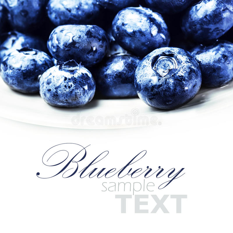 Fresh Blueberries isolated on white background macro. Blueberry stock photography