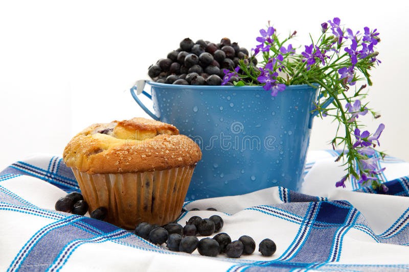 Fresh Blueberries In A Pail. With A BlueBerry Muffin royalty free stock photos