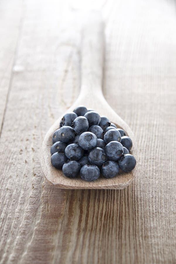 Fresh blueberries spoon royalty free stock photo