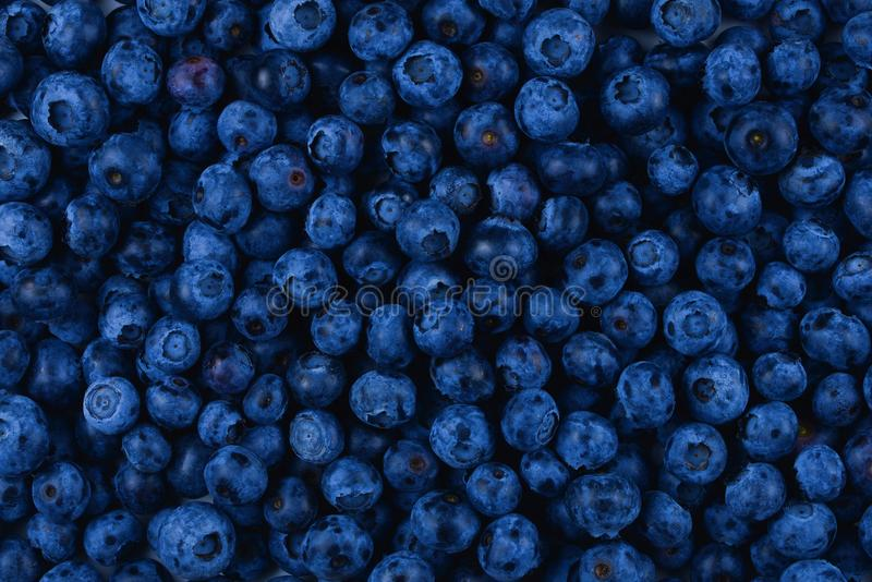 Fresh blueberry background. stock photo