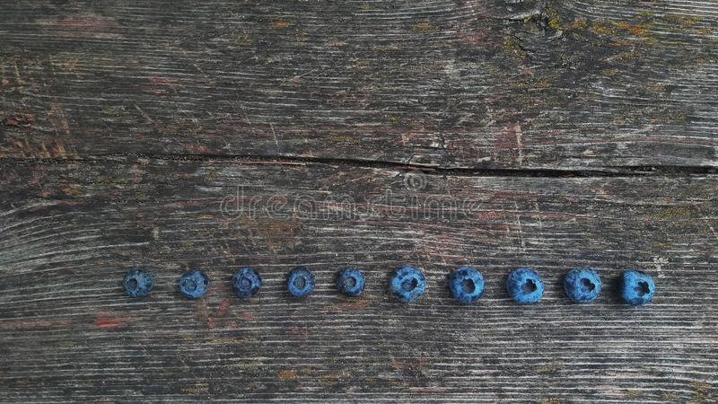 Fresh blueberry . Freshly picked blueberries royalty free stock photo