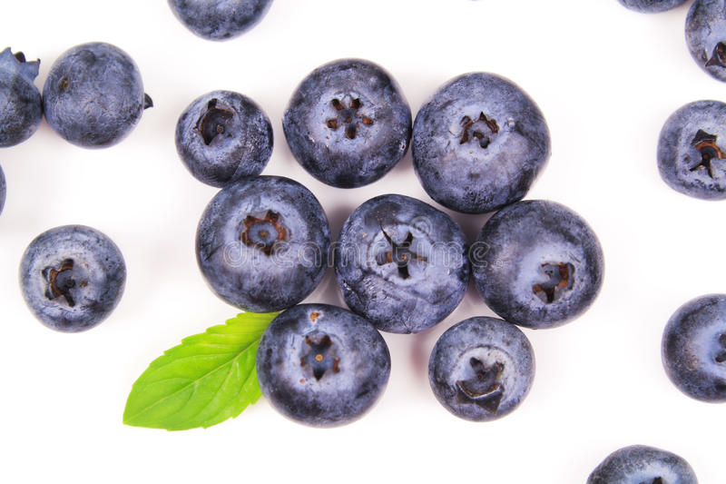Fresh blueberry with leaf royalty free stock photography