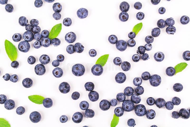 Fresh blueberry with leaf stock image