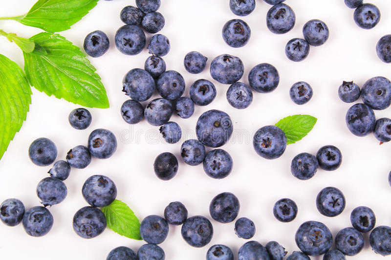 Fresh blueberry with leaf royalty free stock photo