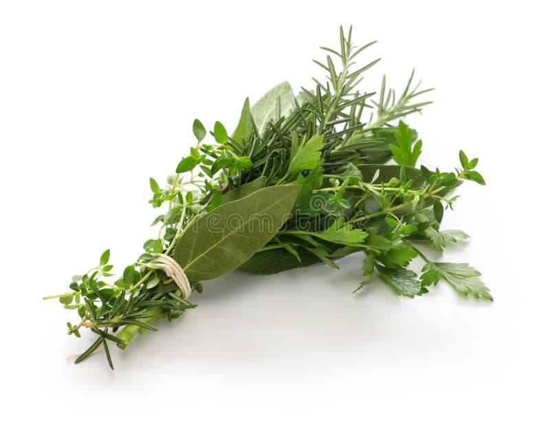 Fresh bouquet garni, bunch of herbs royalty free stock photography