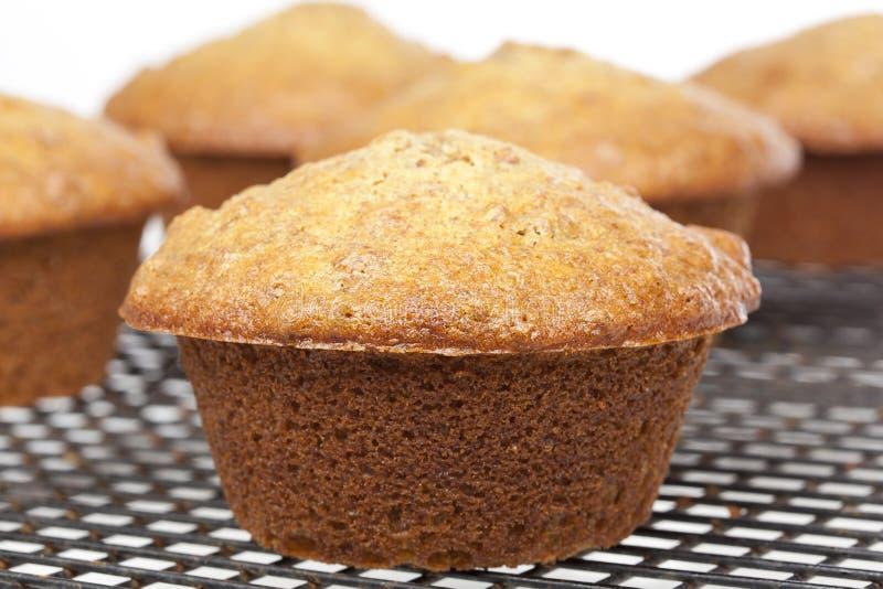 A fresh bran muffin