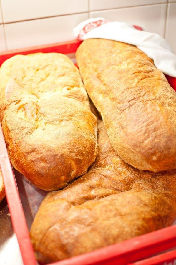 Download Fresh bread stock photo. Image of kitchen, basket, knead - 26562312