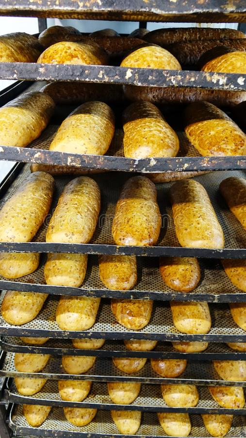 Fresh bread at the bakery.  royalty free stock photos
