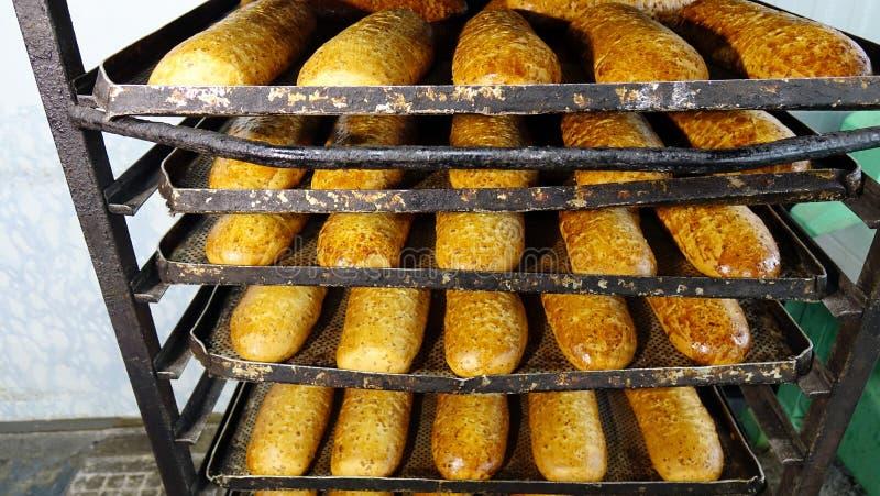 Fresh bread at the bakery.  royalty free stock photo