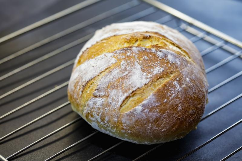 Fresh bread cooling stock photos